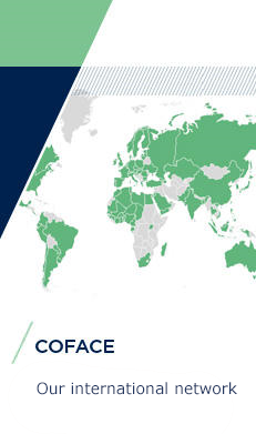 Coface International network