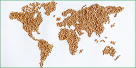 Global outlook for the agri-food sector within a protectionist environment